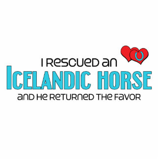 I Rescued an Icelandic Horse (Male Horse) Statuette