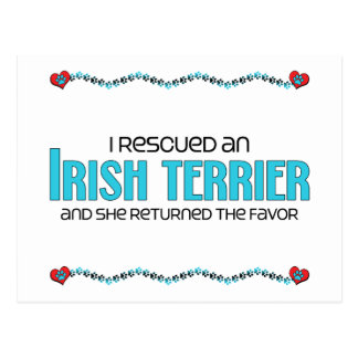I Rescued an Irish Terrier (Female Dog) Postcard