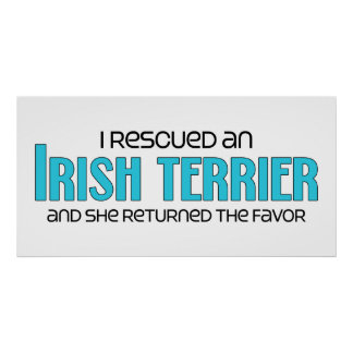 I Rescued an Irish Terrier (Female Dog) Poster