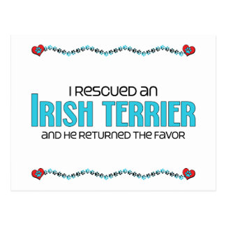 I Rescued an Irish Terrier (Male Dog) Postcard