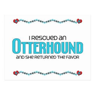 I Rescued an Otterhound (Female Dog) Postcard