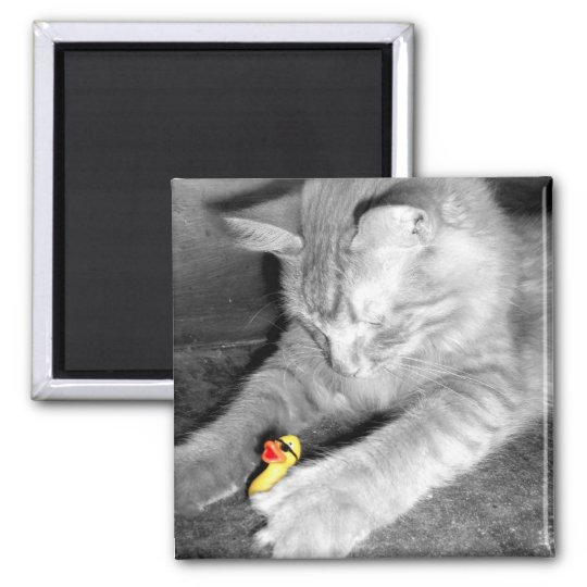 'I Said Don't Feed the Cat' Rubber Duck Magnet