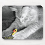 'I Said Don't Feed the Cat' Rubber Duck Mousepad