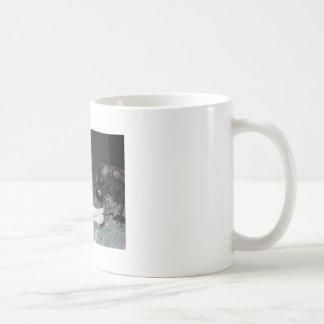 I said now mug