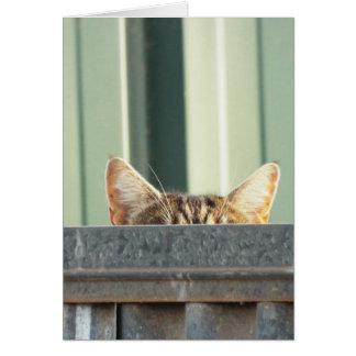 I SAW A KITTY CAT CARD