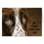I saw what you did... greeting cards