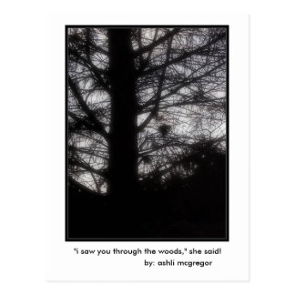 """i saw you through the woods,"" she said! postcard"