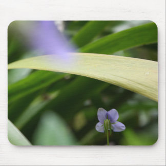 I saw you Wild Violets Floral Photography Mousepad