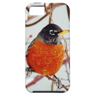 I See Spring iPhone SE/5/5s Case