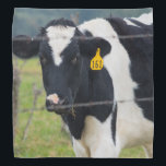 """I See You Bandana<br><div class=""""desc"""">Cattle are the most common type of large domesticated ungulates. They are raised as livestock for meat (beef and veal), Looking for more prints or products? Feel free to visit my store: http://www.zazzle.com/timelessmomentsphtgy This photo was taken by Jennifer White with Timeless Moments Photography. All images are copyrighted &#169; Timeless Moments...</div>"""