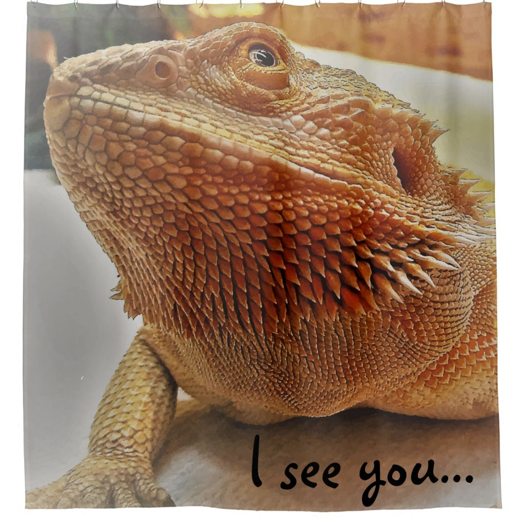 Funny Orange Bearded Dragon Picture Shower Curtain