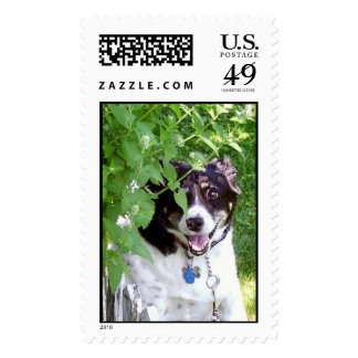 I see YOU! Postage Stamps