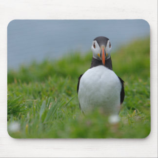 I See You Puffin Mousepads