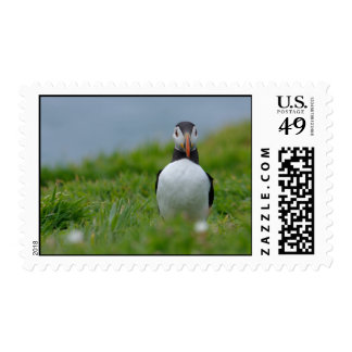 I See You Puffin Postage