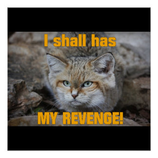 I shall has MY REVENGE! Small Poster