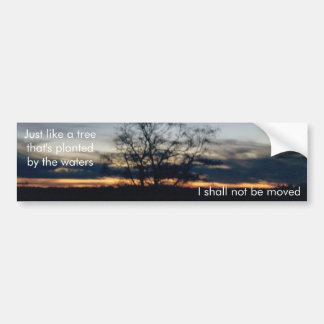 I Shall Not Be Moved Tree Photograph Bumper Sticker