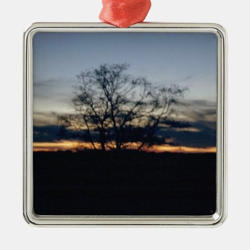 I Shall Not Be Moved Tree Photograph Metal Ornament