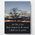 I Shall Not Be Moved Tree Photograph Plaque