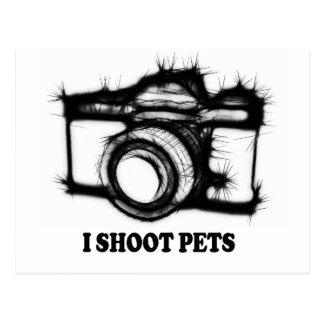 I shoot pets postcard