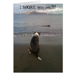 I SHORE miss you!!! Card