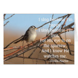 I sing because I'm happy Sparrow Cards