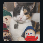 """I Spy A Calico Bandana<br><div class=""""desc"""">Macy, a young, full blooded Calico cat has climbed into a basket of snowmen to cuddle and sleep. Looking for more prints or products? Feel free to visit my store: http://www.zazzle.com/timelessmomentsphtgy This photo was taken by Jennifer White with Timeless Moments Photography. All images are copyrighted &#169; Timeless Moments Photography/Jennifer White....</div>"""
