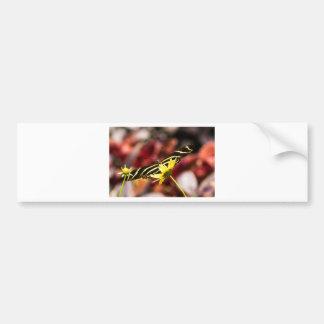 I Spy Bumper Stickers