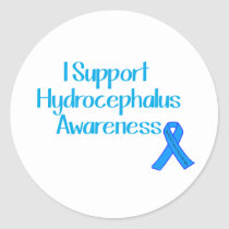 I Support Hydrocephalus Awareness Classic Round Sticker