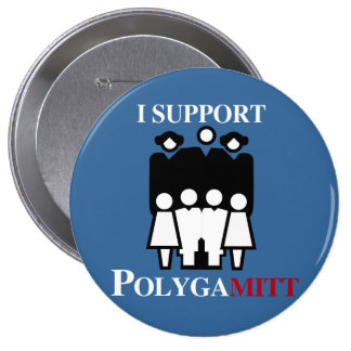 I support Polygamitt.png Pinback Button