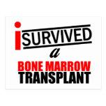 I Survived a Bone Marrow Transplant Postcard