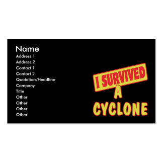I SURVIVED A CYCLONE Double-Sided STANDARD BUSINESS CARDS (Pack OF 100)