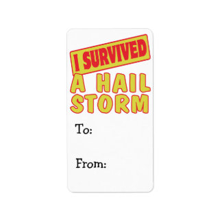I SURVIVED A HAIL STORM LABEL