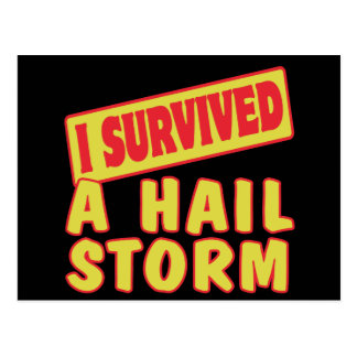 I SURVIVED A HAIL STORM POSTCARD