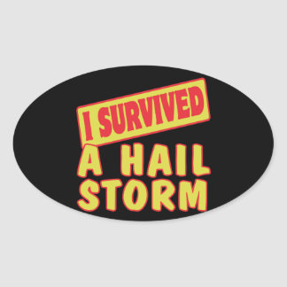 I SURVIVED A HAIL STORM STICKER