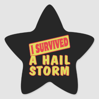 I SURVIVED A HAIL STORM STICKERS