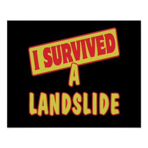 I SURVIVED A LANDSLIDE POSTER