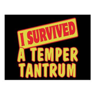 I SURVIVED A TEMPER TANTRUM POSTCARD