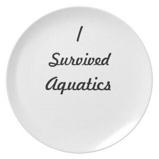 I survived aquatics! dinner plates