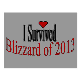 I Survived Blizzard 2013 Postcard