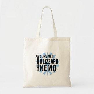 I Survived Blizzard Nemo 2013 Bags 5