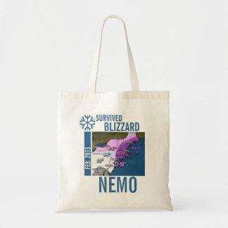 I Survived Blizzard Nemo 2013 Bags 6