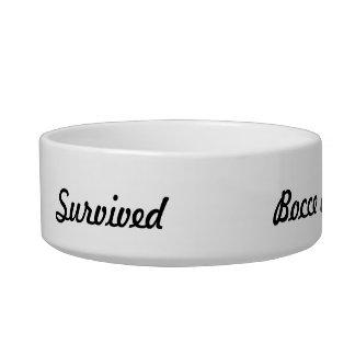 I survived bocce ball! pet bowls