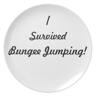 I survived bungee jumping! dinner plate