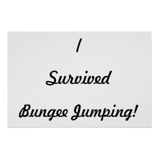I survived bungee jumping! poster