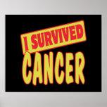 I SURVIVED CANCER POSTERS