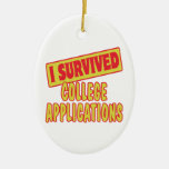 I SURVIVED COLLEGE APPLICATIONS Double-Sided OVAL CERAMIC CHRISTMAS ORNAMENT