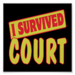 I SURVIVED COURT POSTERS
