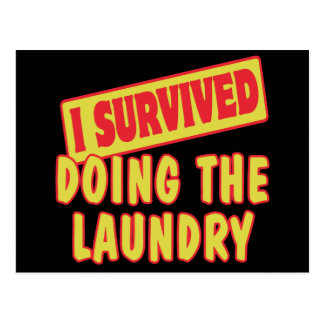 I SURVIVED DOING THE LAUNDRY POSTCARD