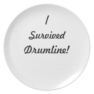 I survived drumline! dinner plate