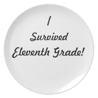 I survived Eleventh Grade! Dinner Plates